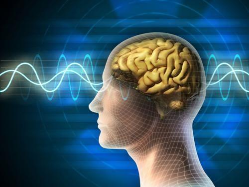 Trunature Ginkgo Biloba giúp bảo vệ hệ thần kinh của bạn