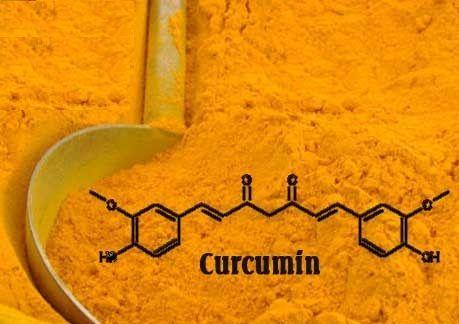 Tinh bột nghệ Đất Việt được chiết xuất 100% từ củ nghệ vàng tươi, hàm lượng curcumin cao
