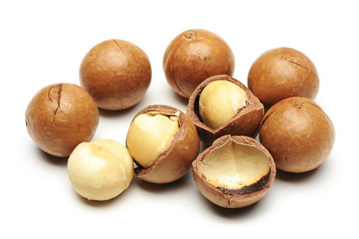 Hạt Macadamia giàu dinh dưỡng, tốt cho sức khỏe,  đặc biệt là bà bầu và trẻ em