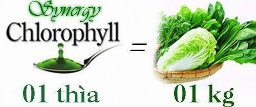 Công dụng của nước diệp lục Chlorophyll Synergy