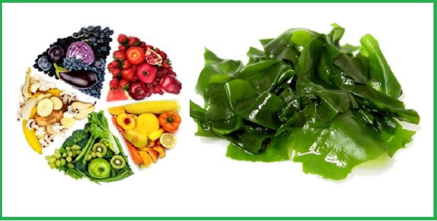 Vitamin tổng hợp & tảo biển Nature's Way chứa 23 loại vitamin, khoáng chất thiết yếu và các chất chống oxy hóa