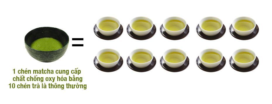 Chống oxy hóa cao hơn 137 lần so với lá trà thông thường