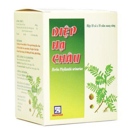 Thuốc hỗ trợ điều trị chứng do viêm nhiễm Diệp Hạ Châu 1