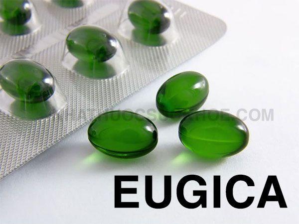 Thành phần Thuốc Eugica - Thuốc trị các chứng ho, đau họng, sổ mũi