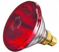 Bóng đèn hồng ngoại Philips PAR38 IR E27 150W chính hãng