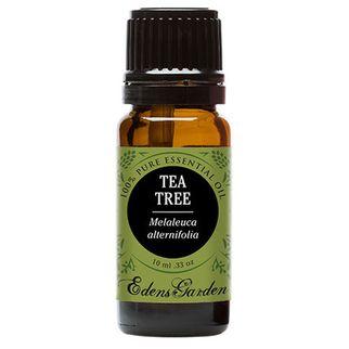 Tinh dầu tràm trà Edens garden 10ml (Mỹ)